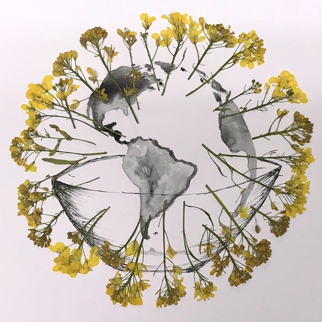 Kunstwettbewerb - Beitrag von Michelle Gallagher