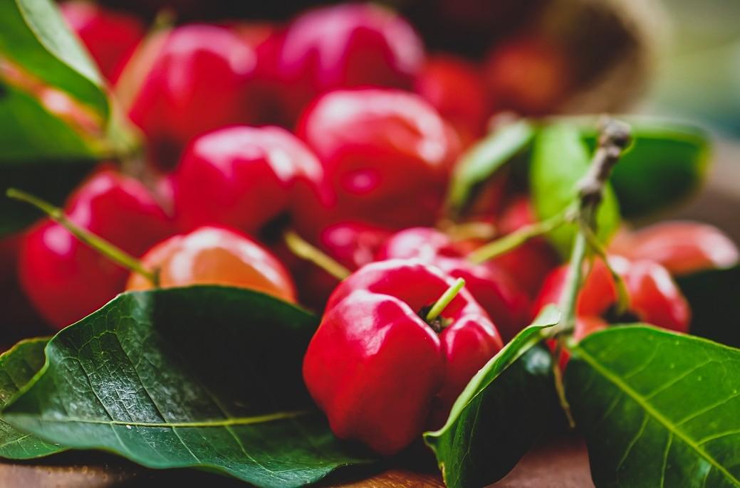 Acerolakirsche als Vitamin-C-Wunder