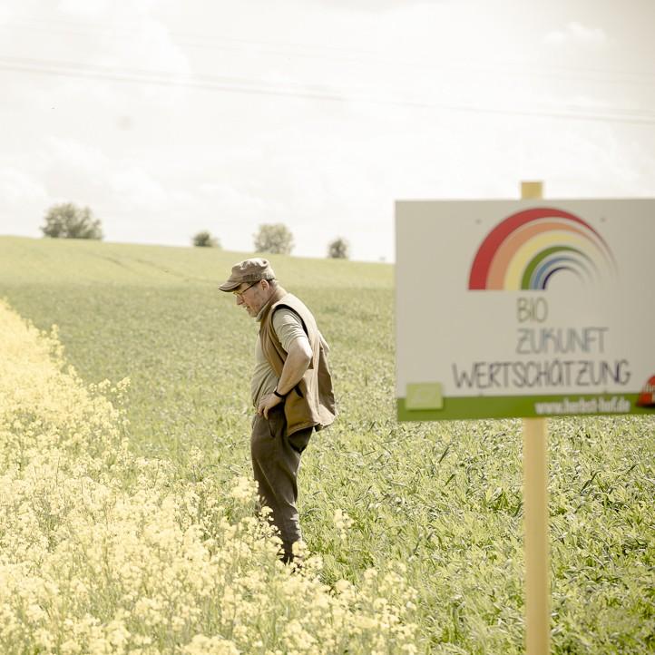 Bio-Landwirt Axel Heinze betrachtet seine Rapspflanzen
